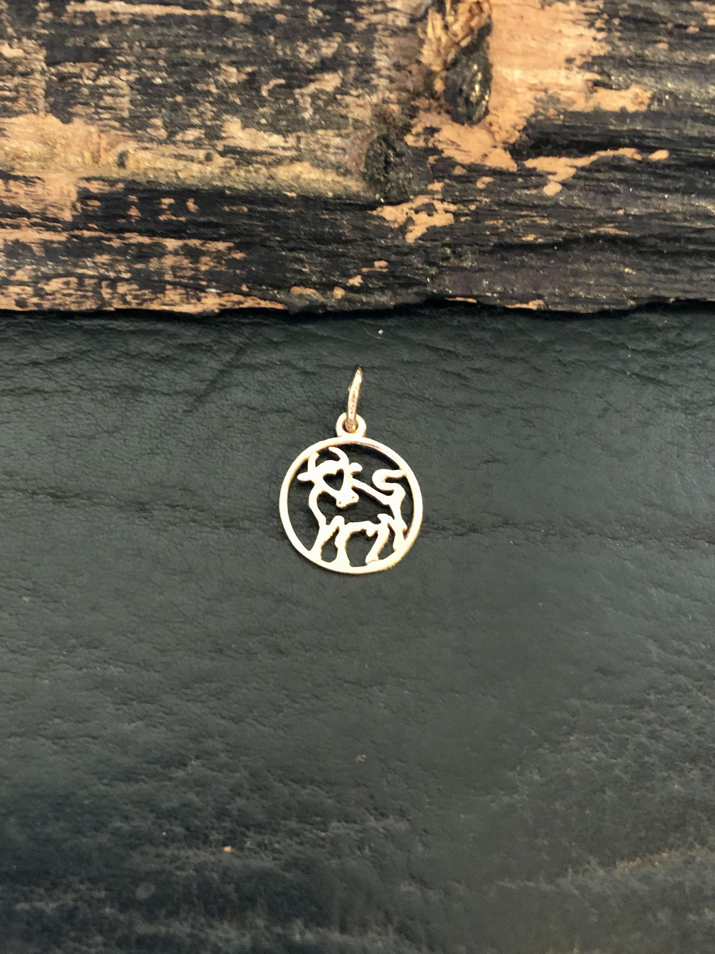"""8 kt. guld stjernetegns vedhæng """"Tyr"""" hos Guldsmedien Køge."""